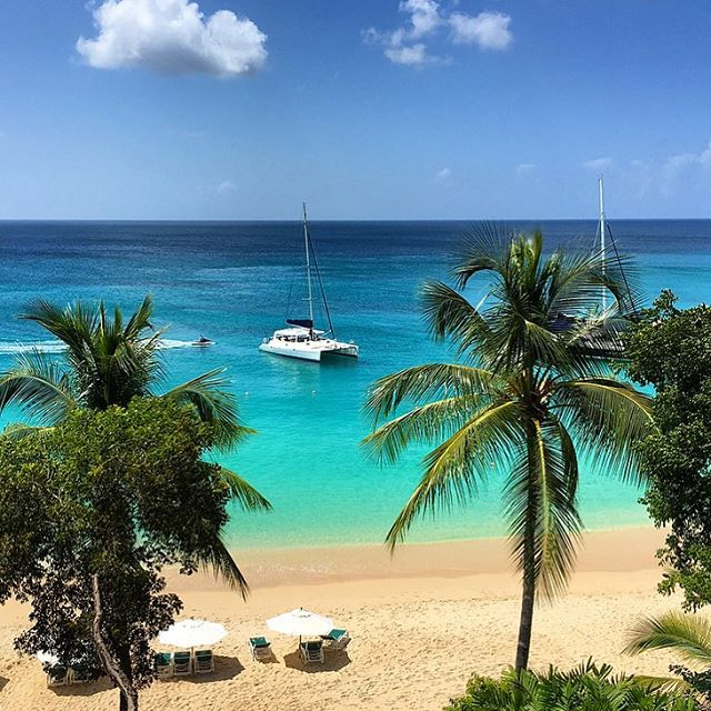 Waking up to this with mega babe @imogenalexandra 😍😏 #Barbados 🇧🇧